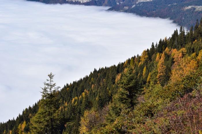 Chamonix Cloud Inversion